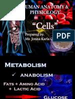Human Anatomy & Physiology - CELLS