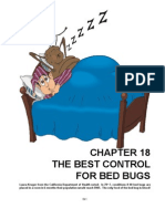 Bed_Bugs