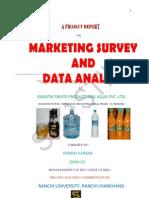 Marketing Survey and Data Analysis