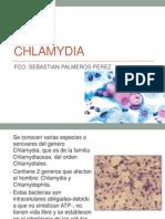 Chlamydia y Chlamydophila