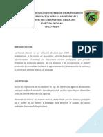 Informe Final Parcela 2012-A