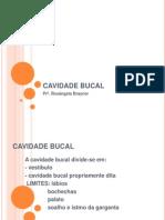 CAVIDADE BUCAL 01