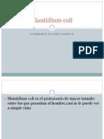 Blantidium Coli