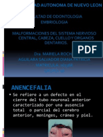 Presentación1 EMBRIOLOGIA