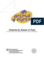 Animal Eyes - Museum Of Vision