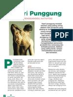Nyeri Punggung LY