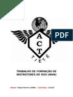 TRABALHO DE FORMAÇÃO DE INSTRUTORES DE VOO