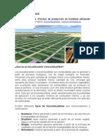 Biodiesel de Algas
