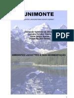 Ambientes Lacustres e sua Sedimentao (Projeto Modular 2 mdulo-2009)