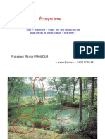 Introduction écosystème