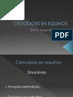 Cestodosis en Equinos