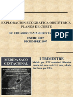 Planos de Corte Obstetrico