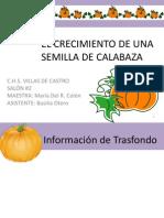 Ejemplo Proyecto Feria Cientifica a Nivel Preescolar
