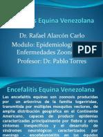 Encefalitis Equina Venezolana Dr. Alarcon