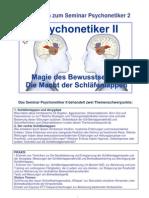 Psychonetiker_2