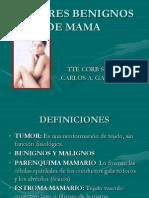 patologia mamaria
