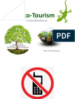 9 Eco Tourism