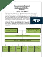 Commercial Bank Management
