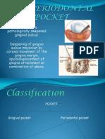 The Periodontal Pocket
