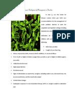 A Recent Development of Management in Diarrhea