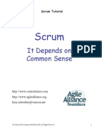 SCRUM Tutorial Common Sense