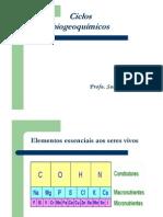 Microsoft Powerpoint Aula 2 Ciclos Biogeoqumicos 1207321576881725 8