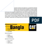 Assignment on BANGLACAT