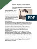 Proceso de Elaboracion y Refinacion Del Aceite