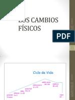 LOS CAMBIOS FÍSICOS  EN ADOLESCENCIA