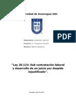 Universidad de Aconcagua UAC