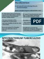 exposicion microbiologia (2)