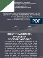 Proyecto Individual psicomotricidad preescolar