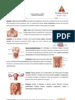 GUIA DE CONTENIDOS - NM2 - ORGANIZACIÓN SISTEMA ENDOCRINO