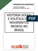 HISTÓRIA SOCIAL E POLÍTICA DOS MOVIMENTOS NEGROS NO BRASIL