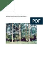 actividad agroforestal