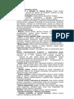 Neurofisiologia básica e clínica