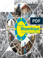 Focus on Mozambique