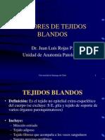 Tumores de Tejidos Blandos Dr Rojas