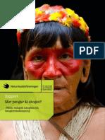 Mer pengar åt skogen? - REDD, biologisk mångfald och fattigdomsbekämpning