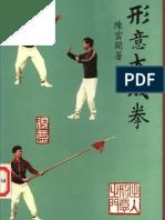 Xingyidachengquan.Chen Yunkai