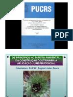 Principios de Direito Ambiental[1]