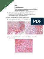 CCP3 Discusion Patologica