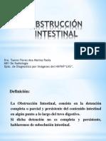 Intestino - Obstrucción Intestinal