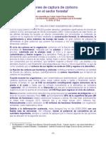 2-Cambio Climático -Opciones de captura de carbono en el sector forestal-Resumen por Carlos Javier  Flores Saracho