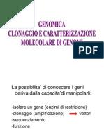 Analisi Molecolare Dei Geni