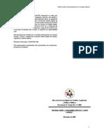 """Documento de Trabajo No. 7-2005 """"INFORME SOBRE LA DISCRIMINACIÓN EN EL CAMPO LABORAL"""""""