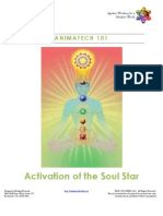 Activation of the Soul Star