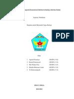 Analisis Pengaruh Konsentrasi Substrat Terhadap Aktivitas Enzim