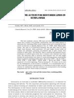 STUDY OF GENE ACTION FOR RESTORER LINES INSUNFLOWER