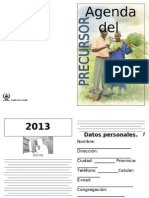 Agenda Precursor2013